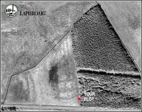 החלקה של עירא בלפרואייג